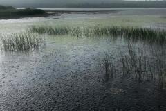 Lake in Rain